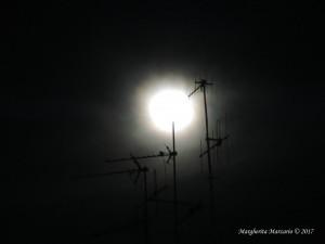 Come la luna calante
