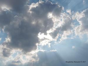 Nel cielo della vita